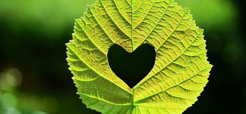 Apagones: Donde encontrar la Luz en el Amor?