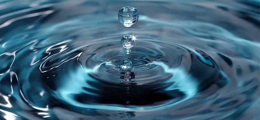 Resultado con el tratamiento del agua Bendita