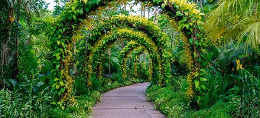 Tratamiento espiritual para la vida sentimental